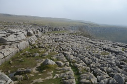 The classic limestone pavement on top of the cove.