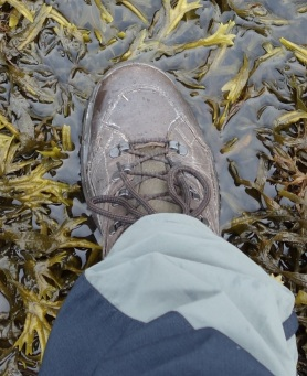 Boots oozing G-wax
