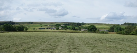 Haymaking along the River East Allen